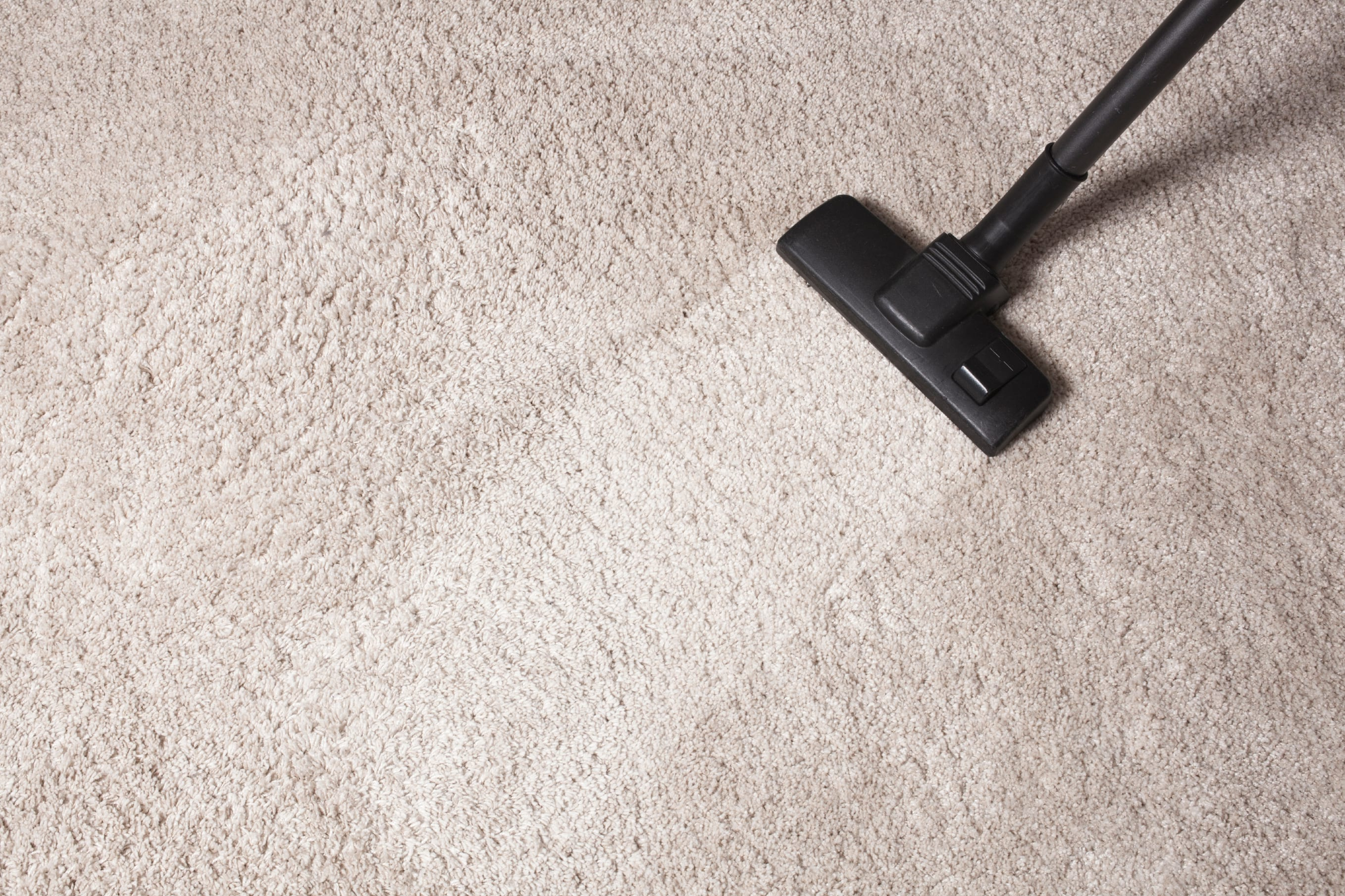 Carpet Cleaning East Orange Nj Pros 973 866 5621 Rug